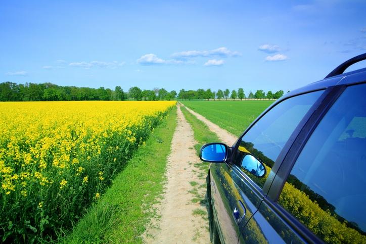 Multiple drivers on rental cars - St. John Forum